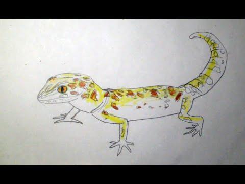 Как нарисовать ящерицу
