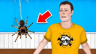 DON'T MOVE Or Get BIT By The SPIDER! (Slap The Fly)