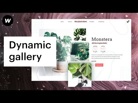Introducing dynamic CMS and Ecommerce galleries | Webflow web design thumbnail