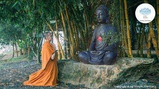 Phật dạy Đau khổ tại tâm và cách buông bỏ trút mọi phiền não - Thanh Tịnh Đạo