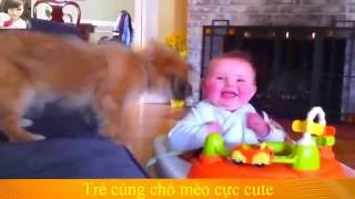 funny animals and baby