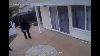 $1000 Reward - Burglary Video - Call San Jose PD or bit.ly/catchthief