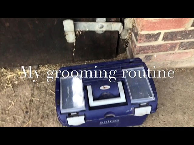 My grooming routine