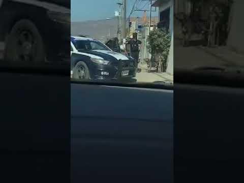 Policía Municipal de Tijuana mata perro