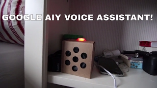 DIY VOICE ASSISTANT?? - Google AIY Projects for Raspberry PI