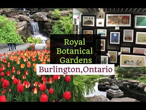 A Visit To Royal Botanical Gardens,Burlington,Ontario,Canada / RBG Centre/Travel Vlog