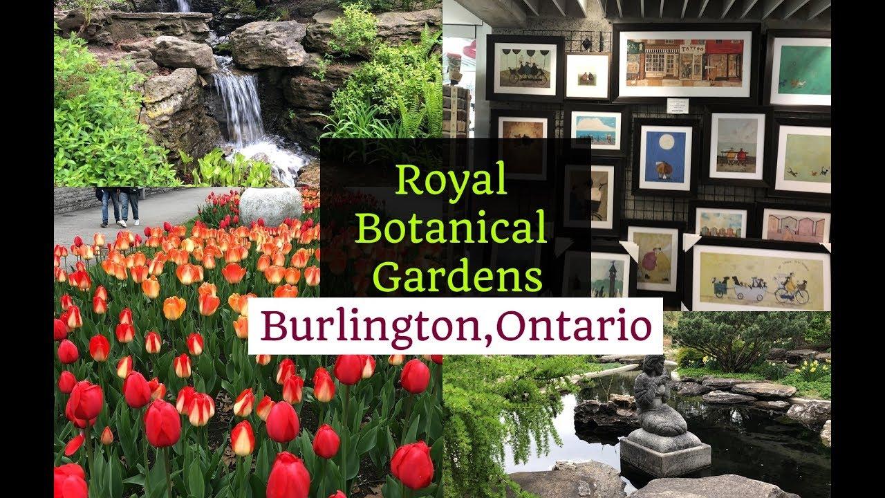 maxresdefault - Royal Botanical Gardens 680 Plains Road West Burlington On Canada