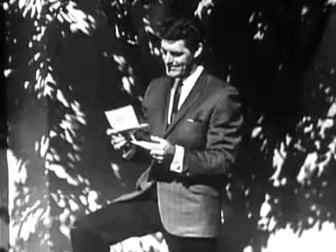 "Bob Braun ""Sweet Violets"""