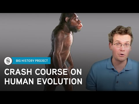Crash Course Big History #6: Human Evolution
