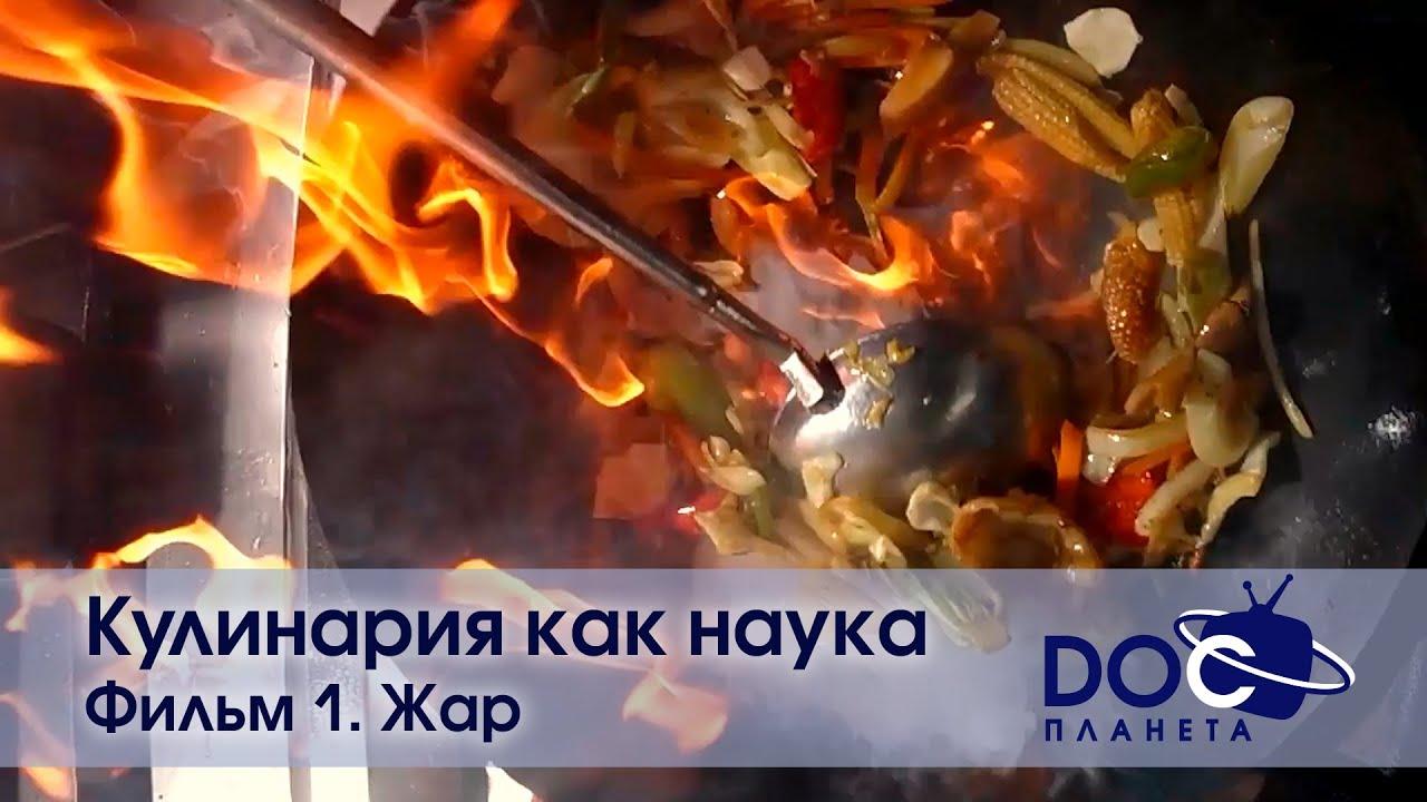 Обложка видеозаписи Кулинария как наука - Фильм 1. Жар - Документальный фильм