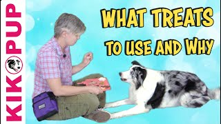What treats to use and why - Professional Dog Training