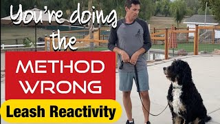 Does your dog have leash reactivity or pull?// WATCH