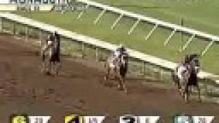 Big Brown wins the 2008 Haskell Invitational