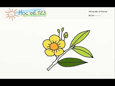 Hướng dẫn vẽ Hoa mai
