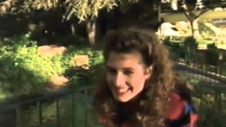 Watch Amy Grant The Christmas Song video