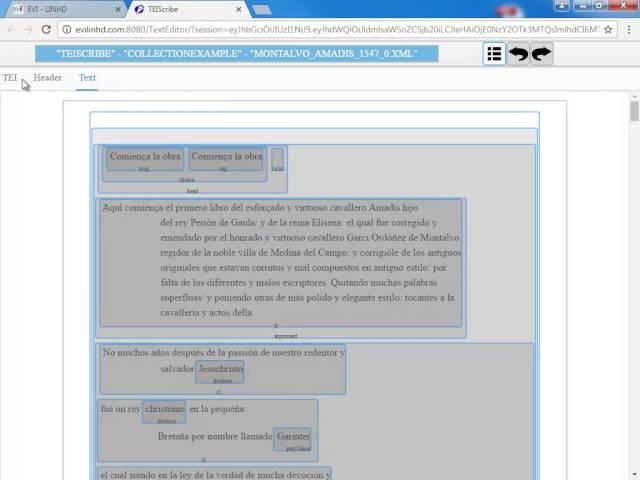 Cómo publicar proyectos con TEIScribe en el Entorno Virtual EVILINHD