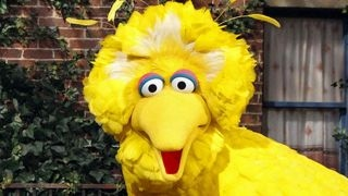 Tucker debate  Should the government cut off Big Bird?