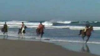 Wild Coast Horse Trails Video – Africa Travel Channel