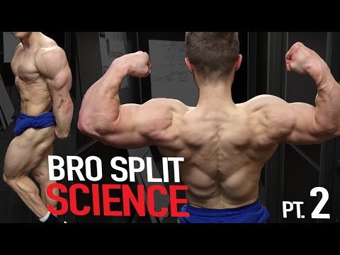 BRO SPLITS: What Does the Science ACTUALLY Say?