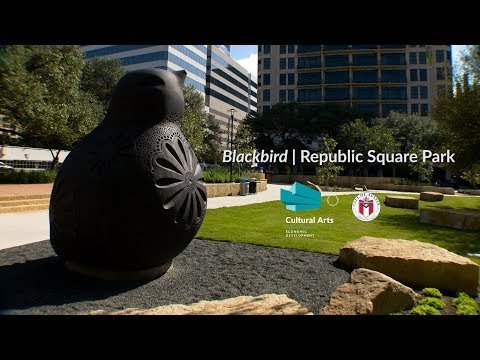Blackbird | Republic Square Park, Austin TX