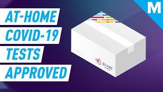 FDA Approves First At-Home COVID-19 Test Kit | Mashable News