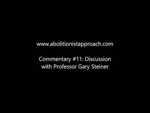 Commentary #11: Discussion with Professor Gary Steiner