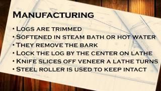 Become a Master Carpenter: Basic Carpentry