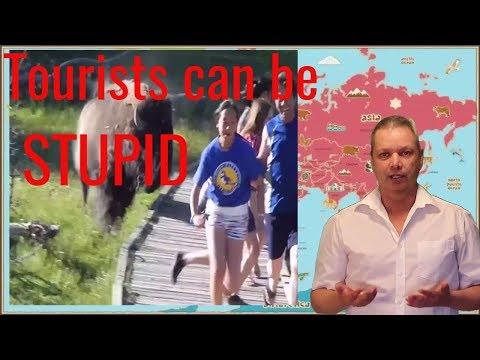 10 stupid things tourists do