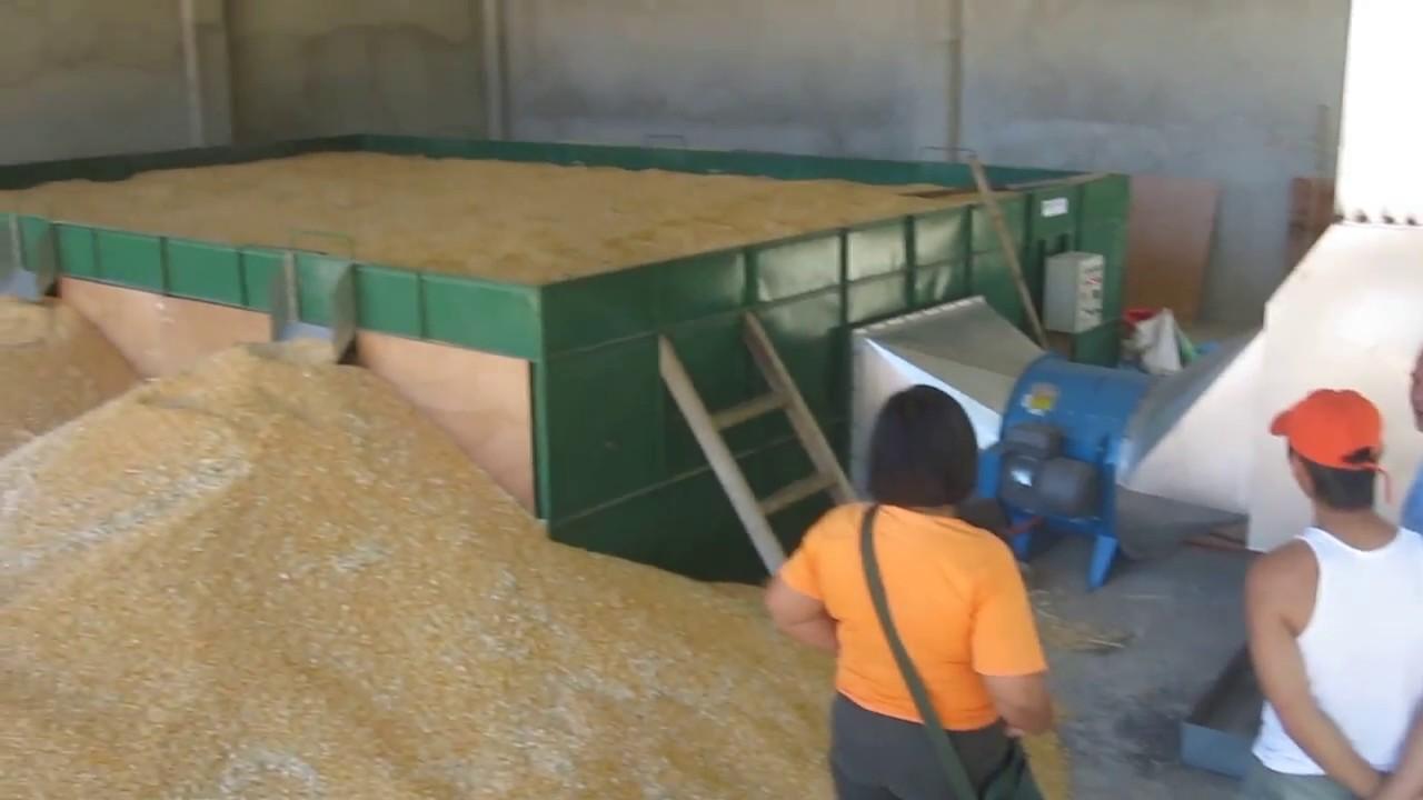 rice dryer machine philippines