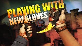 CSGO / ახალი ფერჩატკები ანუ New Gloves
