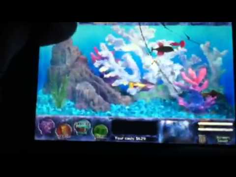 Fish Tycoon How To Get All 7 Magic Fish (part 2)