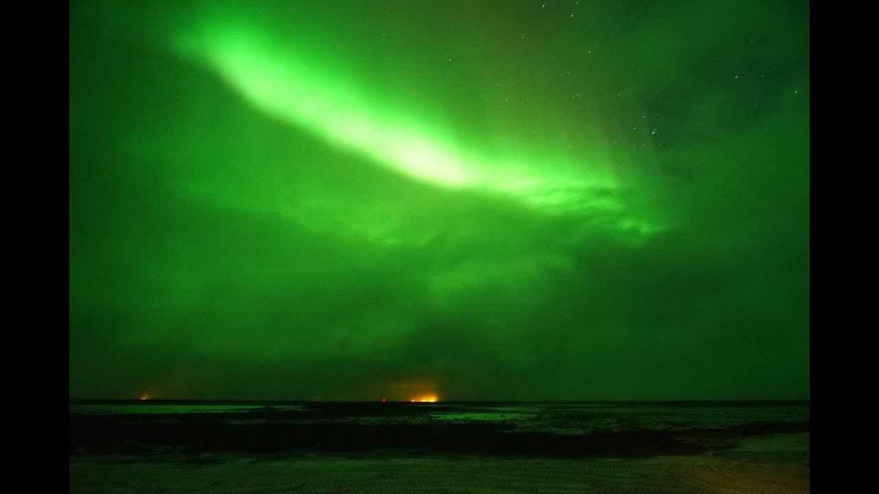 real time northern lights shooting stars and a polar bear youtube