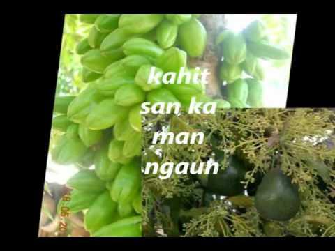 PUSONG BATO- 143 female version (tagalog song)