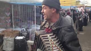 Песни под Гармонь! Музыканты на Свадьбе. Частушки на свадьбе! Уличный музыкант! Песни под гармошку!