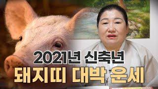 [용한점집]2021년 신축년 '돼지띠' 대박나는 운세[27세, 49세, 51세, 63세, 75…