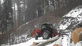 Buchenholz poltern