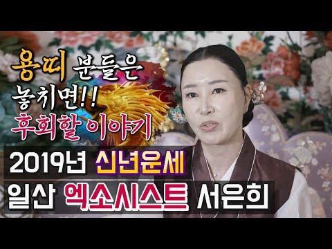 엑소시스트 서은희 - 2019년 기해년 신년운세, 토정비결 (용띠)