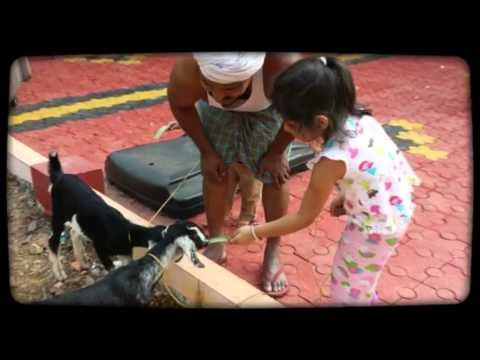 Chalungal India Trip 2014 Video Compilation
