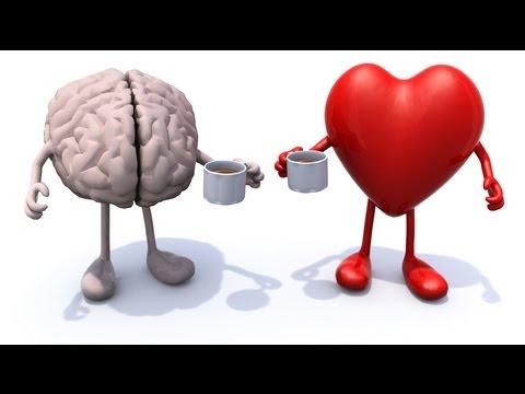 Emocionalna inteligencija from YouTube · Duration:  1 hour 5 minutes 33 seconds