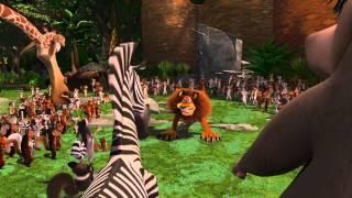 Madagascar 1 - Alex & Marty