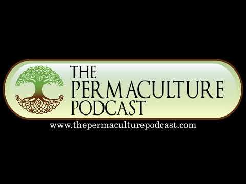 Peace and Permaculture Education with Adam Campbell  Part 1