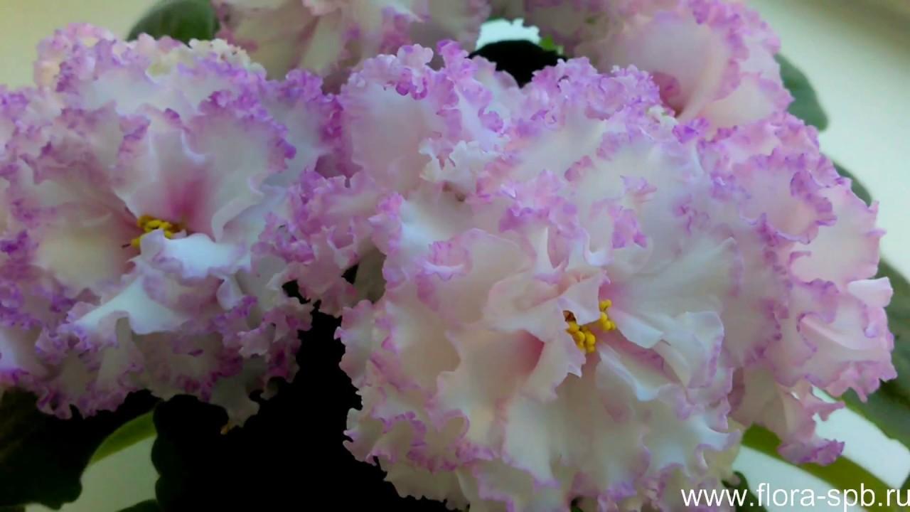 Быстрая доставка цветов по санкт-петербурге и области. Свежие цветы. Купить в один клик. Космический. Наши товары. Заказать цветы букеты.