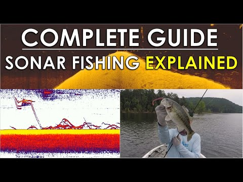 Complete Guide To Video Game Fishing | Sonar, Tackle, And Areas Explained