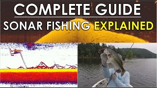 Complete Guide To Video Game Fishing   Sonar, Tackle, and Areas Explained