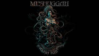Meshuggah - Stifled Outro (extended)