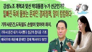 18년7월19일 외신-앞이 안보이는 문재인정권,탄핵직전까지 노조개혁주장, 박대통령 누가 선군인가?.기무사문건,도둑질도 손발이 맞아야 하지.