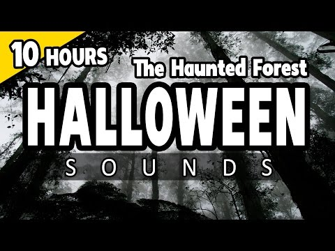 HALLOWEEN SOUNDS - the HAUNTED FOREST at night - Spooky ambiance HALLOWEEN - Campfire, Wolves, Owls