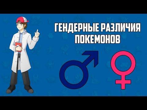Гендерные различия покемонов (лекция из цикла «Лаборатория профессора Хюнта»)