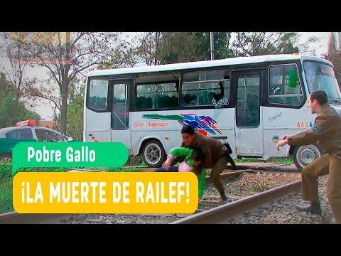 Pobre Gallo - La muerte de Railef / Mega