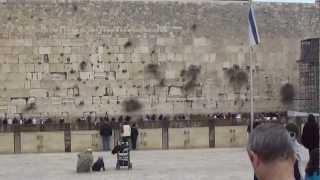 Иерусалим. Стена Плача(Видео от Вячеслава., 2013-03-28T19:17:05.000Z)
